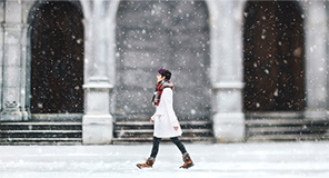 冬のイメージ特集
