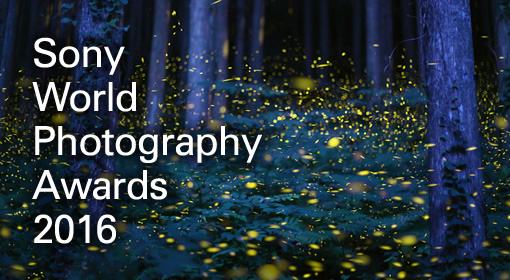 Sony World Photography Awards 2016