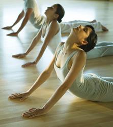 【Yoga】美しくしなやかなヨガイメージ