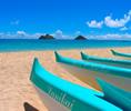 Susan Benay of Hawaii(スーザン・べネイ・オブ・ハワイ)