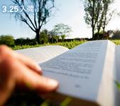 3/11新入荷イメージ
