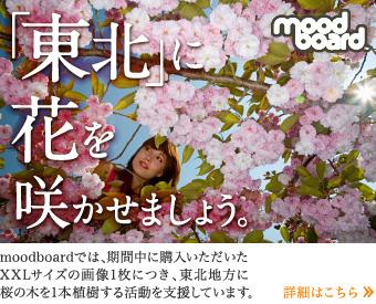 「東北」に花を咲かせましょう。
