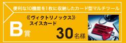 B賞 ≪ヴィクトリノックス≫スイスカード