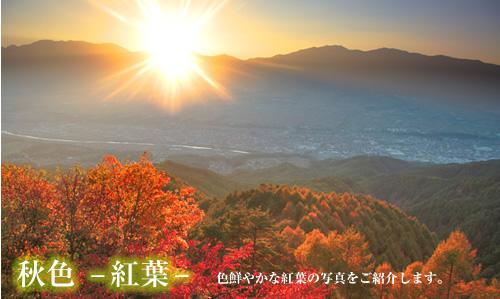 『秋色-紅葉-』