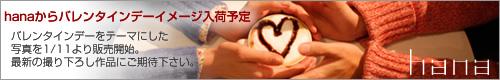 hanaからバレンタインデーイメージ入荷予定\ バレンタインデーをテーマにした写真を1/11より販売開始。最新の撮り下ろし作品にご期待下さい。