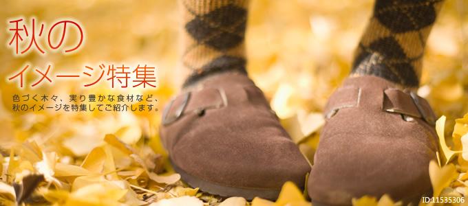 秋のイメージ特集 色づく木々、実り豊かな食材など、秋のイメージを特集してご紹介します。