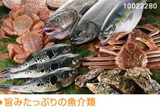 旨みたっぷりの魚介類