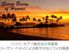 『Susan Benay of Hawaii』 ハワイ、オアフ島在住の写真家スーザン・ベネイによる鮮やかなハワイの風景