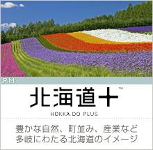 【北海道+】豊かな自然、町並み、産業など多岐にわたる北海道のイメージ(RM)