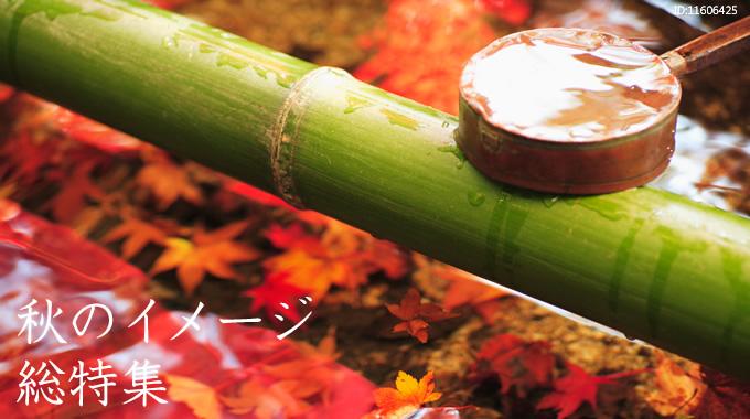 秋のイメージ総特集