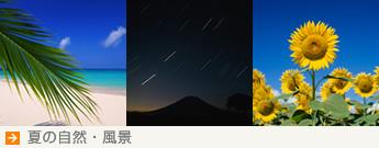 【夏の自然・風景】