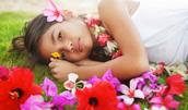 55001652(ハワイの女の子)とその連想画像