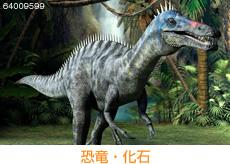 恐竜・化石