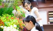 13934444(花屋で働く若い女性)とその連想画像