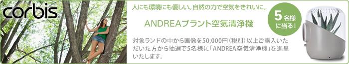 corbisキャンペーン - 対象ブランドの画像を5万円(税別)以上ご購入いただいた方から抽選で5名様に「ANDREAプラント空気清浄機」を進呈します。
