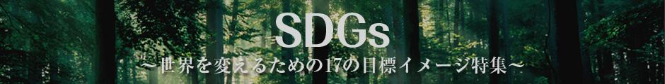 SDGs 世界を変えるための17の目標イメージ - 写真素材のimagenavi